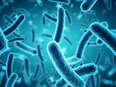 bacteriën (5)